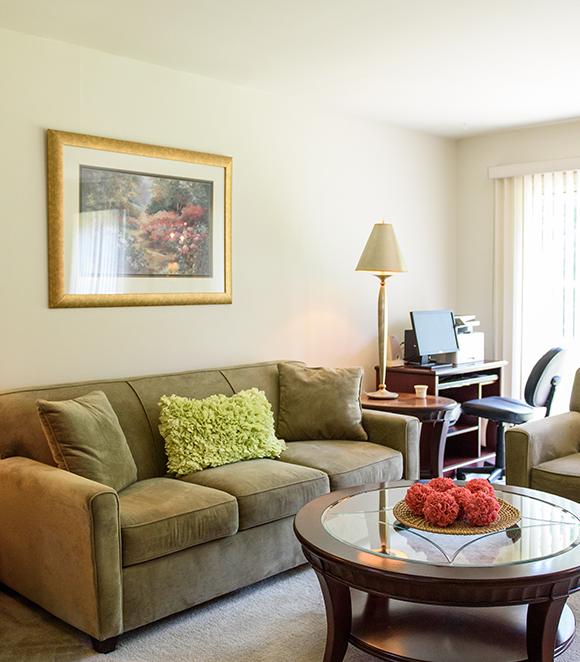 Ryan's Run Apartments living room example